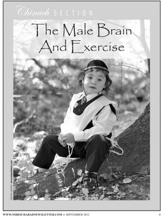 The Male Brain and Exercise